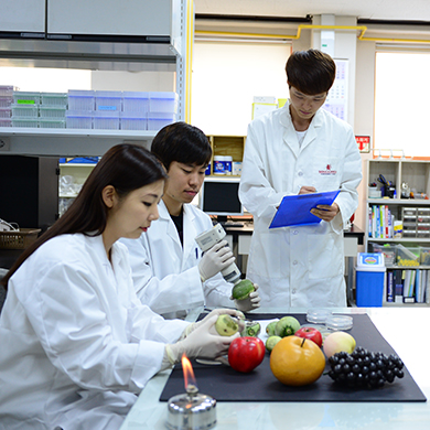 Major of Horticultural Biotechnology